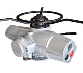 RQIV_RQMIV Series Electric Actuator